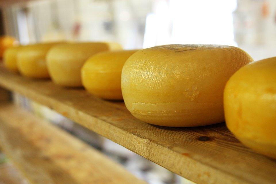 Käse aus Holland - unbedingt probieren!
