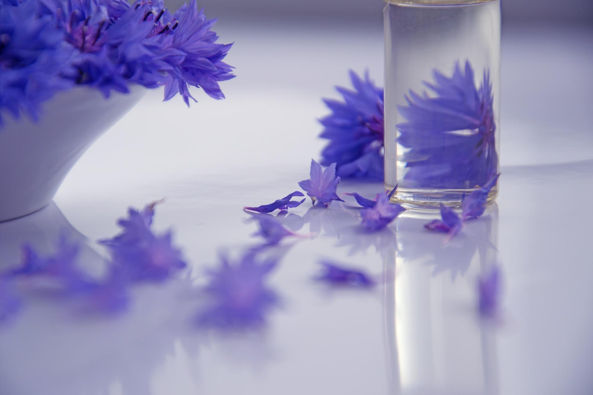 Czym się różnią kosmetyki naturalne, ekologiczne i organiczne od innych? Poznaj certyfikaty