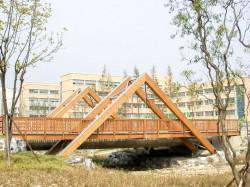 Budowa mostów drewnianych - firma budowlana z Niemiec.