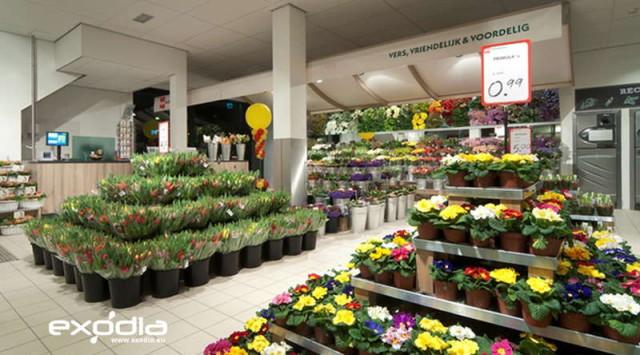 Deka Markt is a very popular Dutch supermarket.